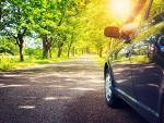 Car on leafy road