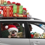 Holiday travel more crowded than ever in 2013